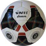 Focilabda, futball labda szintetikus 5-ös méret Winart Dream